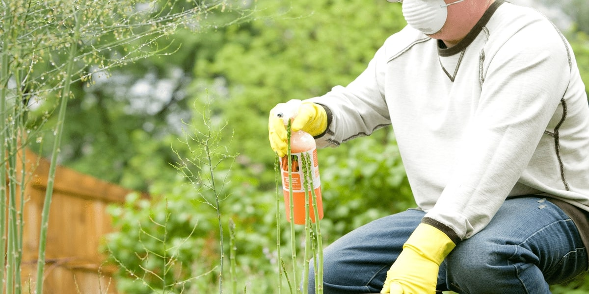 Fertilizers - An Essential Ingredient For Securing The Future